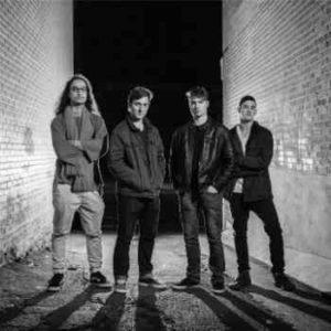 Animal Sun band how to start music career
