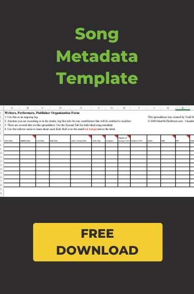 song metadata template